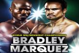 BradleyMarquez
